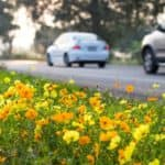 Spring Vehicle Safety Checklist