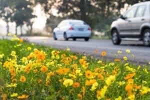 Spring Vehicle Safety Checklist