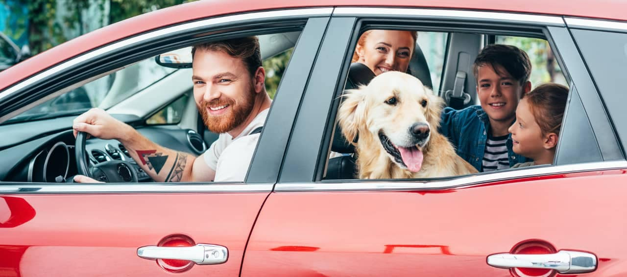 family and dog in car