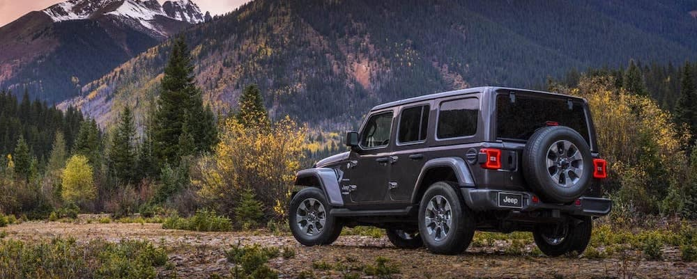 2019 Jeep Wrangler Sahara in gray in front of mountains