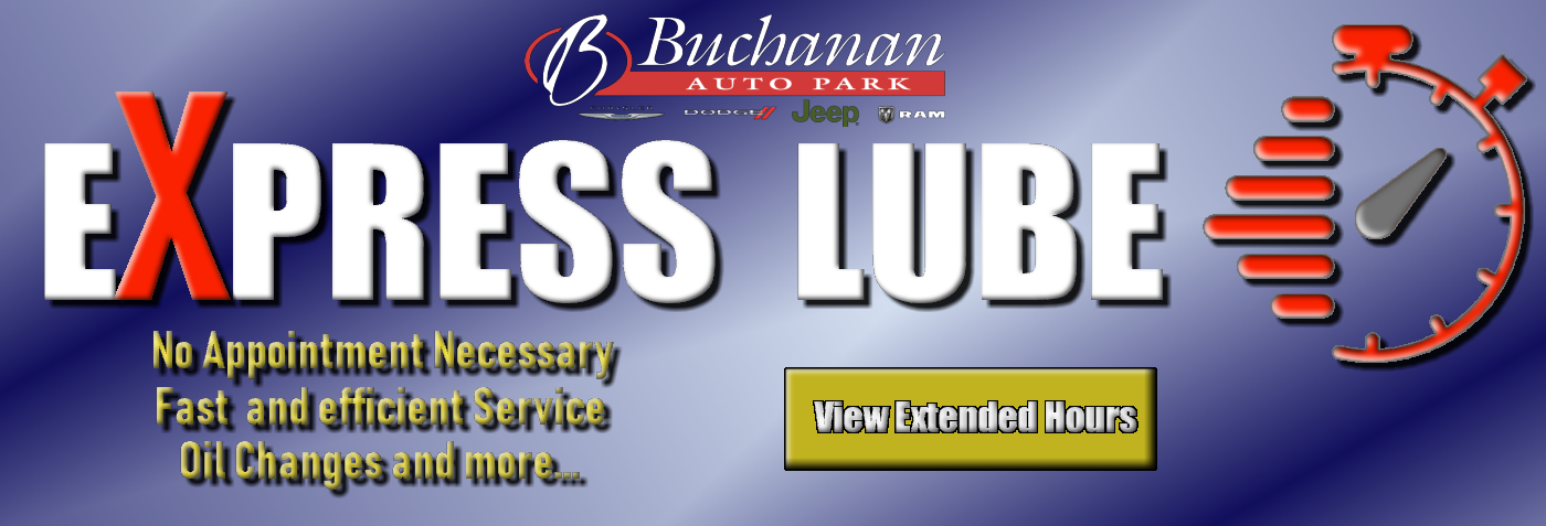 Buchanan Auto Park Inc New And Used Car Dealer In