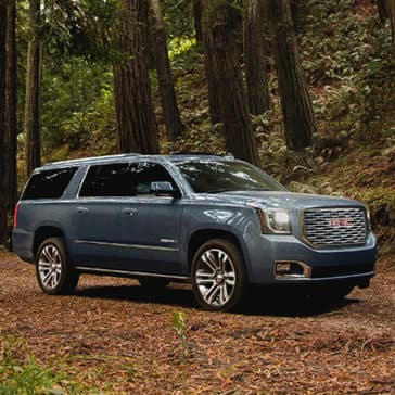 2020 GMC Yukon in the woods