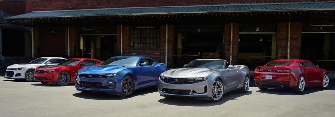 2020 Chevrolet Camaro cars lined up