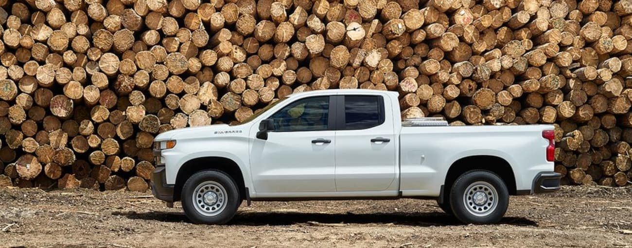 A white 2019 Chevy Silverado in front of a huge, fresh cut pile of wood