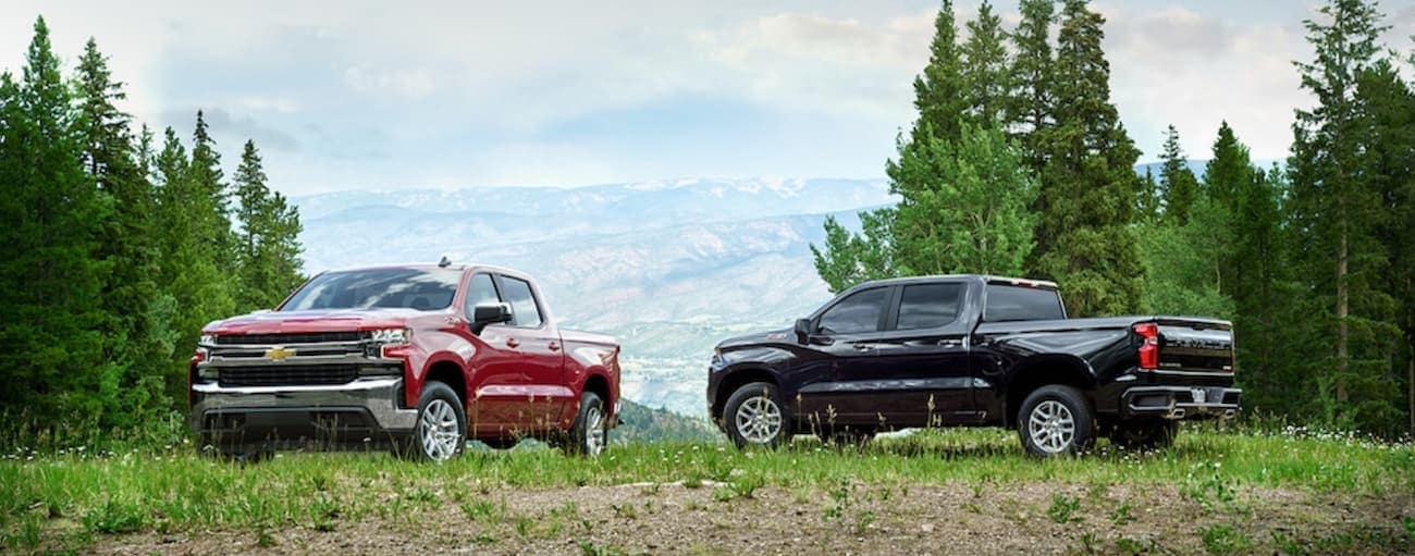 A pair of 2019 Chevy Silverado parked in a mountain field