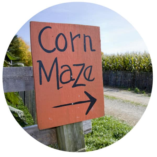 Circle image of corn maze sign