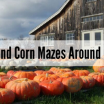 """Photo of barn with pumpkins in yard and """"Fall Activities and Corn Mazes Around Orlando FL 2019"""" black overlay text"""