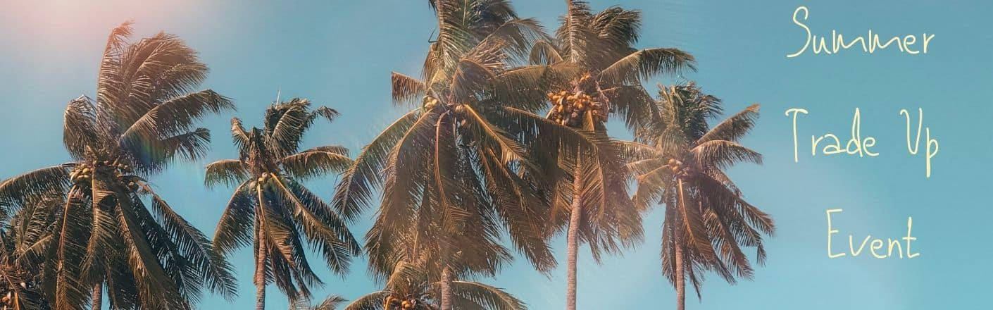 """Palm trees on a clear sky. Yellow-tinted text reads, """"Summer Trade Up Event."""""""