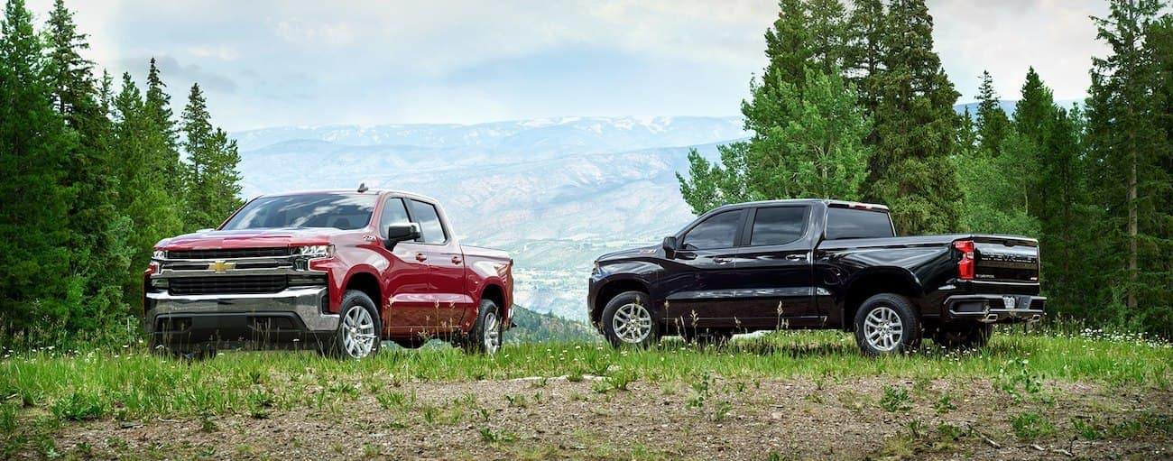 Red and black 2019 Chevy Silverados atop mountain with trees