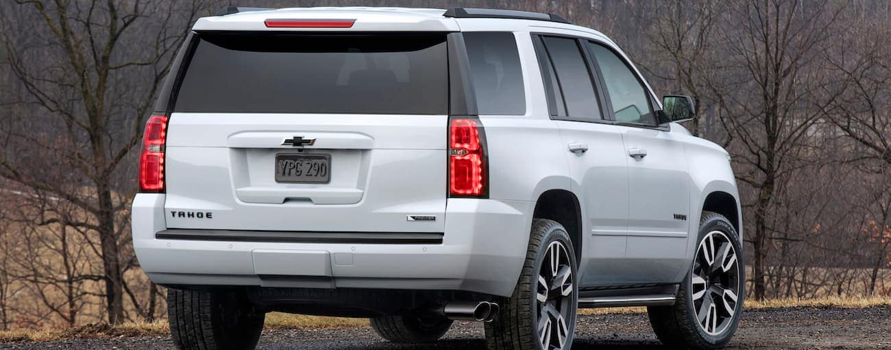 The back end of a white 2019 Chevy Tahoe RST as it overlooks the woodlands