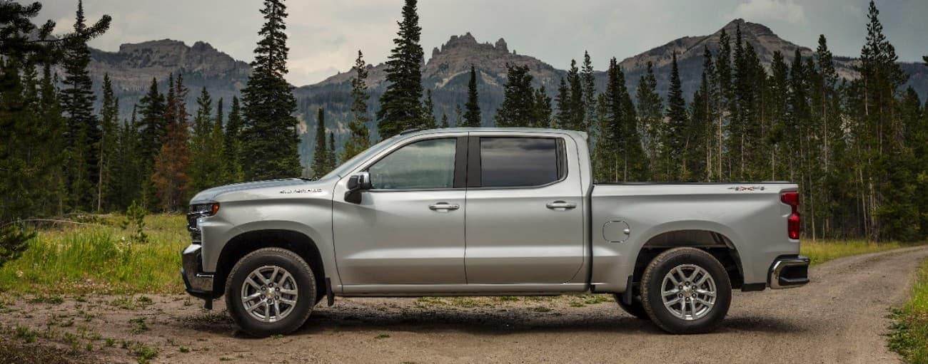 A silver 2019 Chevy Silverado on a woodland trail with mountains in the back