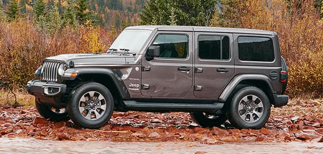Silver Jeep Wrangler parked on a bed of leaves with autumn foliage in the background