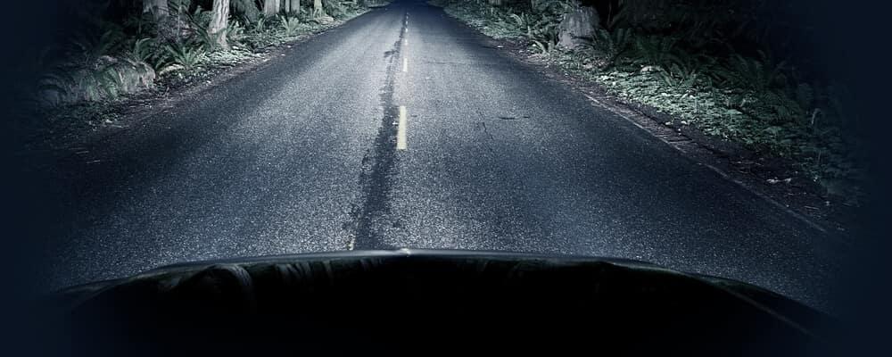 Night Driving Thru Forest