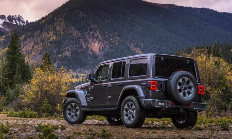 Gray Jeep Wrangler in the forest near some mountains