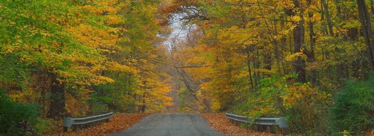 Autumnal Hiking & Bike Trail in Portage County Ohio