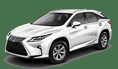 RX Hybrid