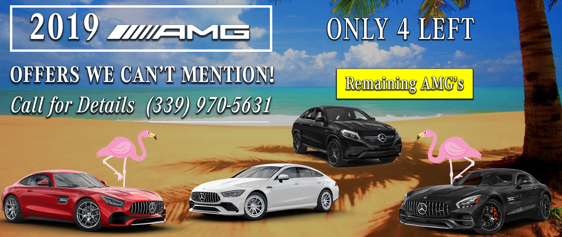 1800×760 – 2019 AMG® Remaining Banner – UPDATED 2