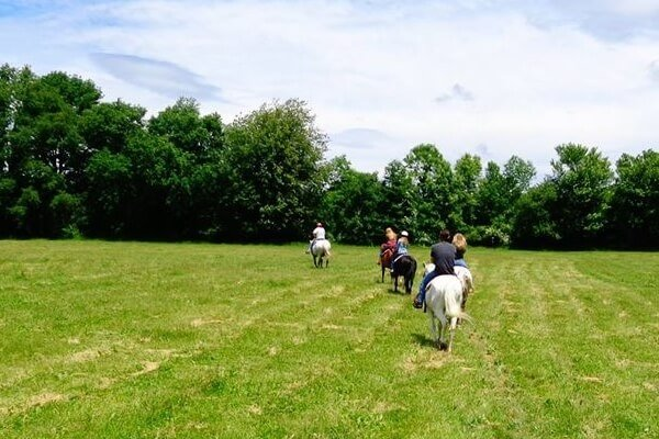 People horse back riding in beautiful weather