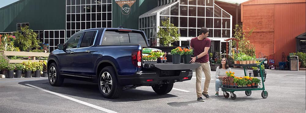 Couple Loading Plants Into Honda Ridgeline