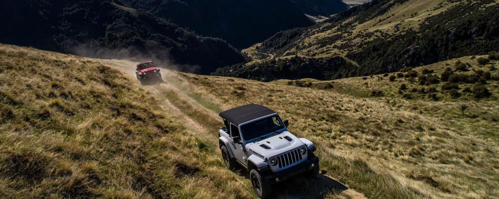 Two Jeep Wranglers on Trail