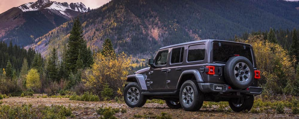Gray 2019 Jeep Wrangler Sahara parked at the base of a mountain