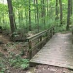 an old wooden bridge in the middle of a green forest