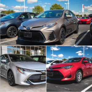 Check out three of our brand-new 2019 Toyota Corolla's and our entire Corolla lineup right here: http://bit.ly/2x2XtMO