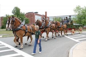 horses | Quirk Chevrolet