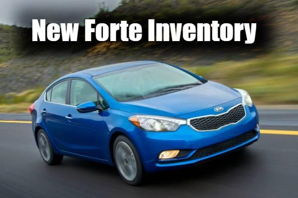 Search Forte Inventory