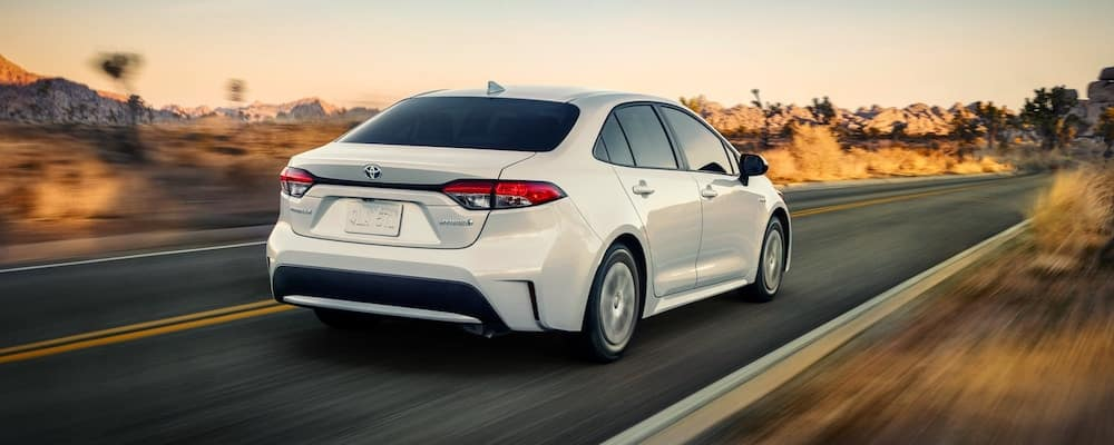 White 2020 Toyota Corolla on Desert Highway from behind with blurred background. 2020 Toyota Corolla MPG concept.