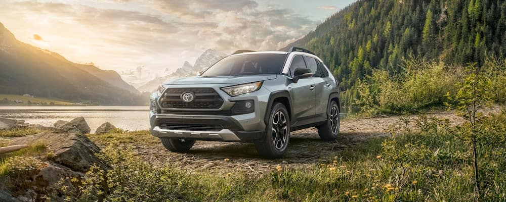2019 Toyota RAV4 parked in sunny spot in mountain forest area