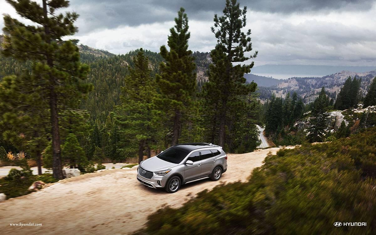 2017 Hyundai Santa Fe in the forest