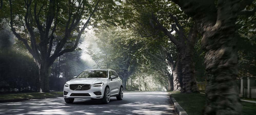 White Volvo XC60 driving down tree-lined street